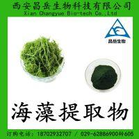 海藻提取物10:1 海藻粉价格 海藻多糖 包邮