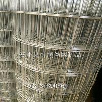 辽宁大孔电焊网 热镀锌铁丝网 圈玉米网现货 苞米网厂家