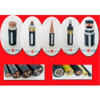阳谷齐鲁牌裸铜线多芯交联塑料绝缘聚氯乙炔PVC护套电力煤炭用 1*20