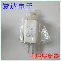 西安中熔RS306-01-T5Z-100A 高压熔断器 低压熔断器 100A熔断器