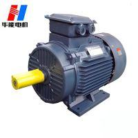 山东盛华电机定制YE2高效率三相异步电机
