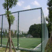 本厂供应篮球场浸塑护栏 体育场勾花网护栏 运动场足球场围栏网厂家