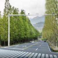 交通信号杆——热镀锌喷塑、安全性能高 厂家直销 五月特惠