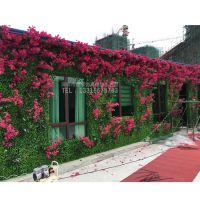 绿琴厂家热销植物墙 仿真绿植墙 人造仿真叶子 不腐烂 酒店装饰墙体绿化 绢花塑料玫瑰花