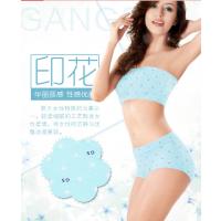 国内十大品牌内衣生产厂家港莎总部女式全棉内裤供应