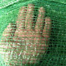 盖土网材料 绿色盖土网规格 密目网展会
