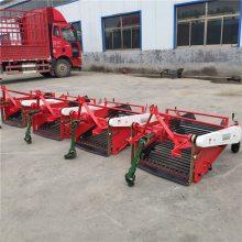 吉林红薯收获机 牵引式薯类收获机 农用起土豆机