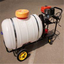 四川手推式拉管式喷雾器 杨树林防虫打药机 值得信赖的喷雾器