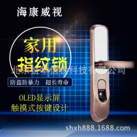 海康威视DS-L2-FP指纹密码锁智能家用防盗安全锁