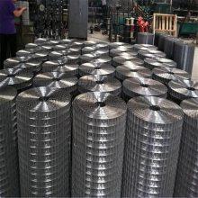 热镀电焊网 优质焊接网 耐高温电焊网加工定做