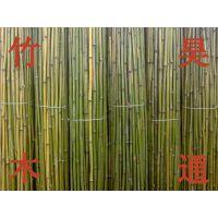 雪峰山2.3米、2.5米、2.8米、3米、菜架竹、小竹竿、架材、竹架条