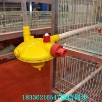 中州订做养鸡自动水线肉鸡蛋鸡水线配件饮水器设备