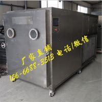真空冷冻干燥机 各类农产品干燥设备 榴莲冻干榴莲干干燥机