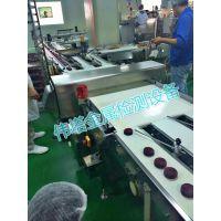 调味粉金属探测器 面包饼干金属检测仪器 冰激淋冷饮金属探测仪