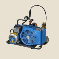 流量100L/min进口宝华空气充气泵JUNIOR?II-E