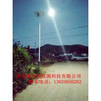 沧州太阳能路灯锂电控制器,沧州LED太阳能路灯低压产品安全性强***新款式