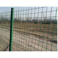 重庆绿色铁丝防护网批发 果园圈山荷兰网 简易波浪围栏网 养殖网