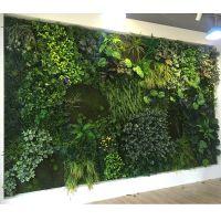 东莞紫萱工艺品仿真植物墙立体绿化墙室外外植物墙户外特密米兰草篱笆绿