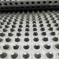 hdpe塑料排水板安徽厂家 车库绿化疏水板凹凸型 20mm排水板