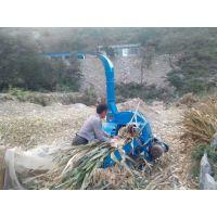 新疆玉米秸秆牧草铡草机 220V家用型青贮铡草机
