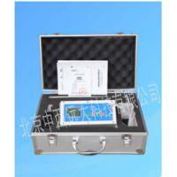中西(LQS促销)泵吸式多气体检测仪 型号:ZXQC-03库号:M407498