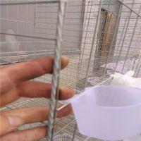 河北利港丝网批发鸽子笼 三层12位鸽笼1.5*2米 1.7*2米