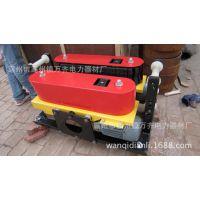 湖南长沙电缆输送机 双减速机输送机双减速机输送机