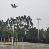湛江篮球场照明灯杆 运动场灯杆 批发供球场6-15米灯杆