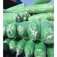 绿化盖土网 防风防尘网 防尘网材质