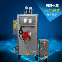热销推荐自然循环低压30kg燃油锅炉 燃汽蒸汽发生器 节能环保工业设备