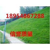 http://himg.china.cn/1/4_734_236906_690_518.jpg