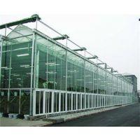智能玻璃温室_玻璃温室_青州瑞青玻璃温室建设