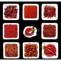 脱水蔬菜辣椒 方便健康 驱寒暖胃