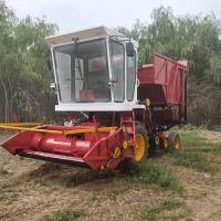 新款青储牧草收割机 玉米秸秆青贮机 高性能秸秆青储揉丝机