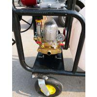 内蒙古节省人力的打药机 低价直供手推式汽油喷雾机