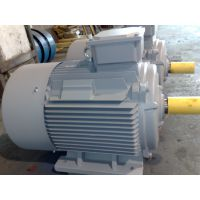 Y2DT系列双速电机Y2D 80M1-4/2 0.45/0.55kWZODA中达电机