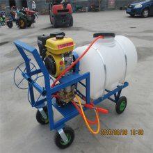 汽油高压喷雾器 圣鲁牌 花圃苗木喷雾器