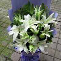 武汉鲜花绿植百合花,单朵百合鲜花3.3元,武汉同城送货,当天到