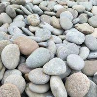 博淼厂家直销 鹅卵石石头 庭院铺面 园林石雨花石 量大从优