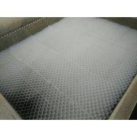 乙丙共聚蜂窝斜管填料价格-型号选型-批发采购-乙丙共聚蜂窝斜管填料