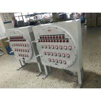 落地式防爆照明配电箱 BXM51-20回路防爆照明配电箱
