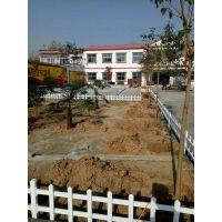 河南南阳厂家现货供应pvc学校小区围墙护栏 变压器围栏 塑钢草坪护栏