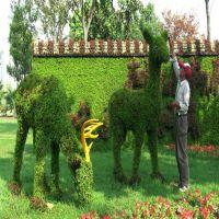 浩晟 工程承包 仿真植物绿雕动物 仿真植物绿雕 市政工程