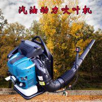 种菜大户用的大棚吹雪机 新款汽油吹风机 佳鑫背负式吹树叶机厂家