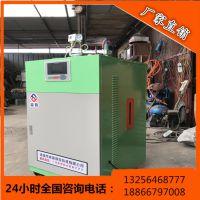 电加热蒸汽发生器亮普LP生产厂家,低水位控制