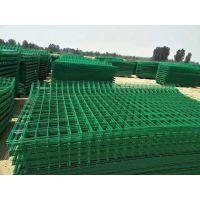 包塑护栏网 PVC绿色防锈护栏网 铁艺围栏 厂区 园林围墙网 厂家供应