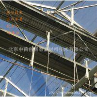 【专业厂家】 荷兰种植M钩 抗老化吊秧器 中荷挂钩4米 6米 10米15米 规格可电联定制