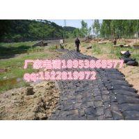 http://himg.china.cn/1/4_741_242740_629_453.jpg