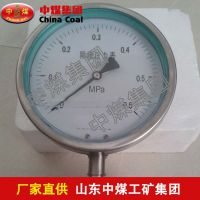 YMN系列隔膜式耐振压力表,YMN系列隔膜式耐振压力表优点,ZHONGMEI