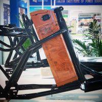 DISOM迪生48V10ah,电动自行车锂电池价格,山东48V锂电池厂家